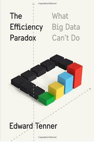 Image: The Efficiency Paradox book cover